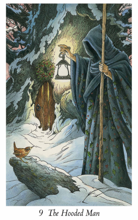 Wildwood Tarot: The Hermit